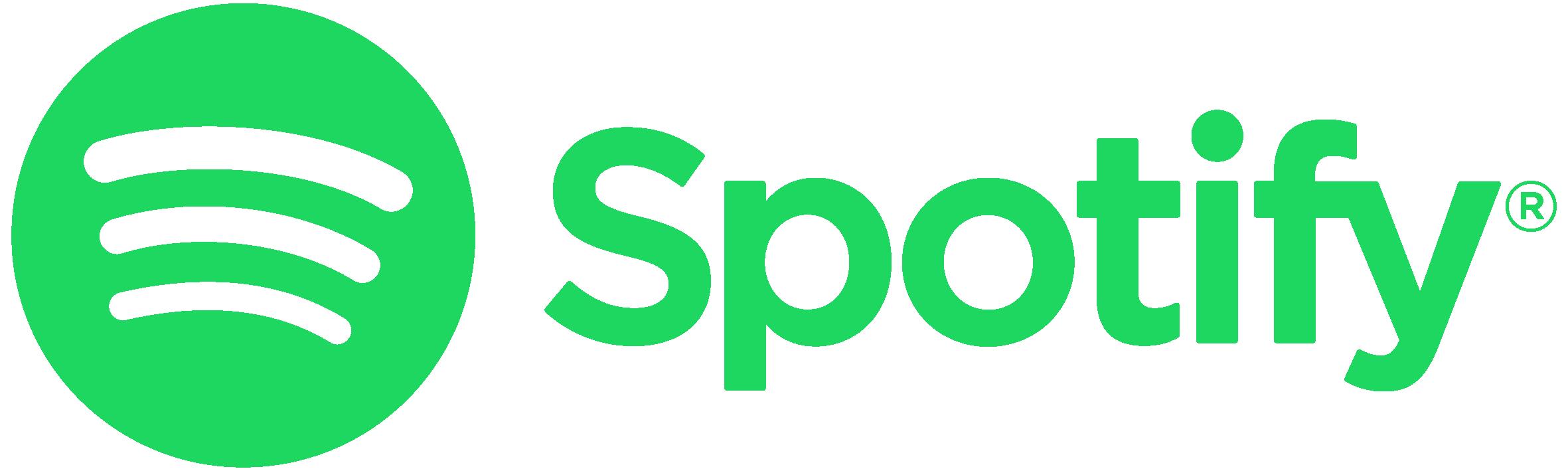 DSINA auf Spotify